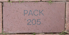 Pack 205